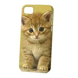 Case Fun Apple iPhone 5C Case - Vogue Version - 3D Full Wrap - Cute Kitten