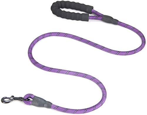 Fullgaden 5 FT Reflective Dog Leash, Heavy Duty with Comfortable Padded Handle, Purple