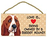 Love is being owned by a Basset Hound 5