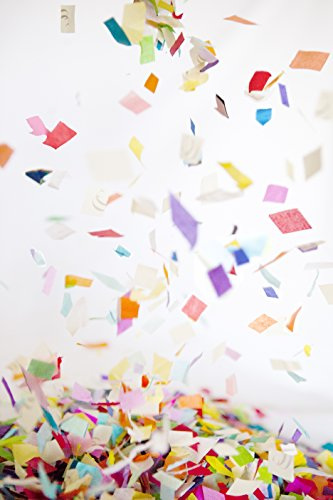 Colorful Rainbow Shredded Tissue Paper Confetti, bulk jumbo bag. Made from recycled paper. For birthdays, engagements, and surprise parties. by Hit Delights