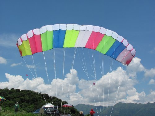 Skywalker 3M Dual-line Control Parafoil Parachute Stunt Sport Kite Park Beach Garden Fun by Generic