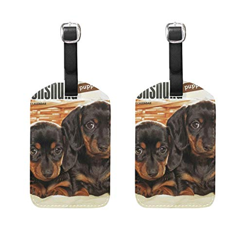 ASLGlicenseplateframeFG Luggage Tags Dog Brother Womens Baggage Tag Holder Airplane Travel Accessories Size 2.2 X 3.7 inches