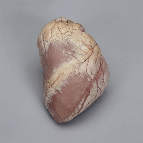 (Perfect Solution Preserved Sheep Heart, Plain, 1 Per Bag)