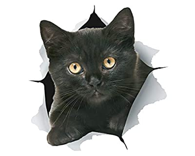 Winston & Bear 3D Cat Stickers | 2 Pack | Black Kitten Decals for Wall - Stickers for Bedroom - Fridge - Toilet - Car - Retail Packaged