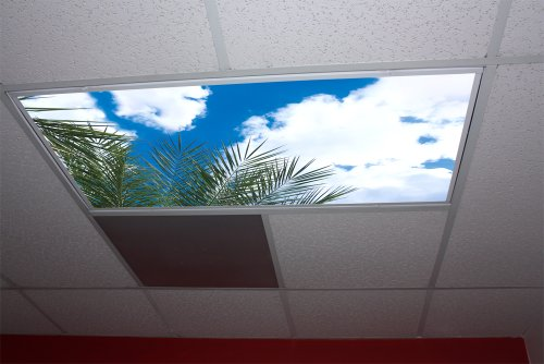 Palm Tree Skypanels - Replacement Fluorescent Light - Behind Palm Trees
