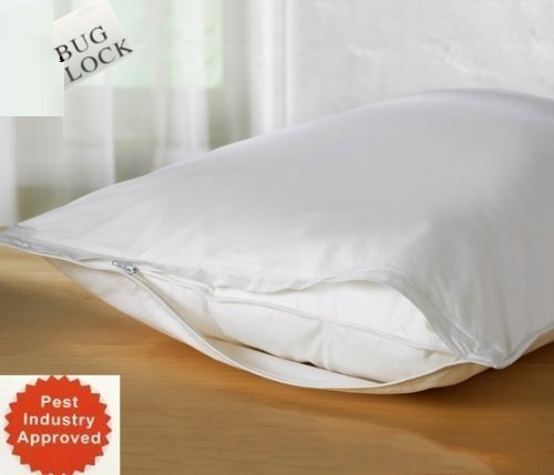 Premium BED Bugs Pillow Protector a Set of 2 Pillow Protectors - Lifetime Warranty (Queen (21