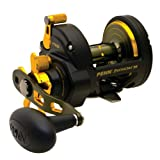 Penn Fathom Star Drag Conventional Baitcast Reel (40-Pound/300-Yard), Outdoor Stuffs