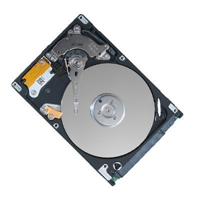 250GB 2.5 Inchs SATA HDD Hard Disk Drive for HP Mini 110 110-1012NR 110-1014NR 110-1015LA 110-1020BR 110-1020LA 110-1020NR 110-1022NR 110-1030NR 110-1033CA 110-1033CL 110-1045DX 110-1050NR 110-1127NR 1101 311 311-1000NR 5101 Laptops