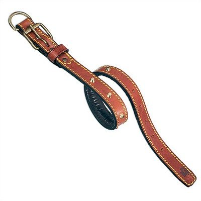 "Classic Padded Leather Dog Collar with Studs Size: 1 1/5"" Wide x 24 3/4"" Long, Color: Brown (As Shown)"