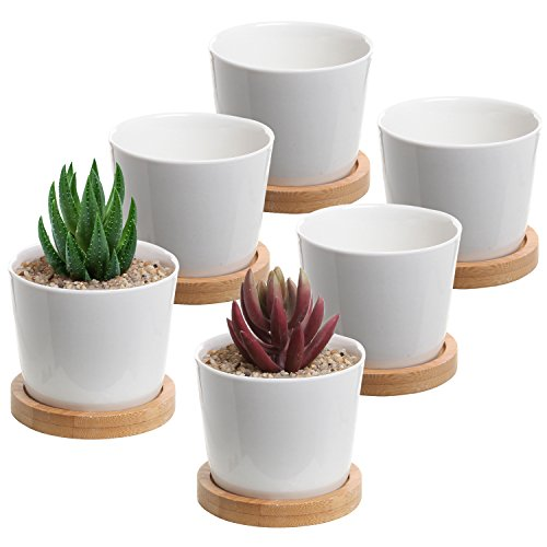 Herb Saucer Cup (MyGift 3-Inch White Ceramic Mini Planter Cups with Bamboo Saucers, Set of 6)
