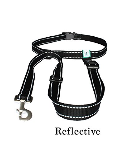 Caldwell's Pet Supply Co.. Hands Free Reflective Running, Walking, Hiking and Jogging Dog Leash for Large and Small Dogs - Black by Caldwell's Pet Supply Co.