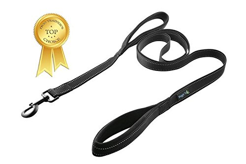 Waggin Tails Soft &Thick Dual Handle 6FT Dog Leash, Premium Nylon Double Padded Handles for Medium, Large or XLarge Dog in 5 Vibrant Colors Classic Comfort by (Black)