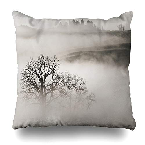 Ahawoso Throw Pillow Covers Foggy Toscana Sunrise Tuscany Italy Vineyard House Parks Fog Agriculture Autumn Belvedera Design Home Decor Zippered Pillowcase Square Size 20 x 20 Inches Cushion Case ()