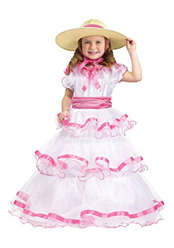 Fun World Costumes Baby Girl's Sweet Southern Bell Toddler Costume, Pink/White, Large(3T/4T) -