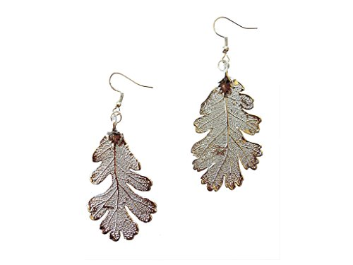 Silver Dipped REAL Lacey Oak Leaf, Silver Plated Leaf French Wire Dangle Earrings, Made in USA ()