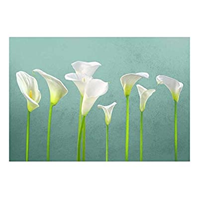 Wonderful Style, Arum Lilies with Teal Textured Background Wall Mural, Classic Design