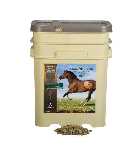 Assure Plus Equine Sand Clearance Supplement (15-Pound) by Assure Plus