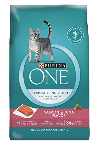 Purina ONE Salmon & Tuna Dry Cat Food 41mt9qnpgPL