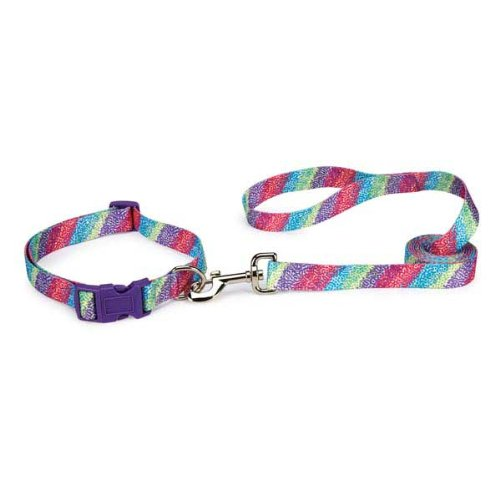 East Side Collection Confetti Print Pet Collar, 18 to 26-Inch, Raspberry