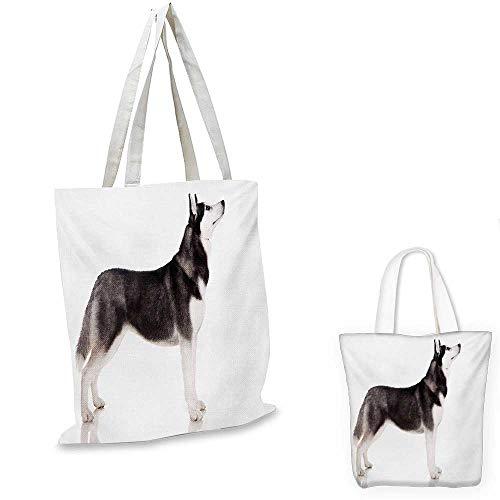 Alaskan Malamute non woven shopping bag Alaskan Animal Arctic Canine Mammal Obedient Companion Portrait Purebred fruit shopping bag Black White. 12