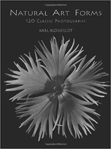 Book Natural Art Forms (Dover Pictorial Archives) by Karl Blossfeldt (1998-04-01)
