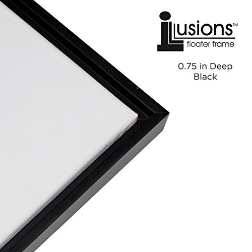 Frames for Canvas Paintings: Amazon.com