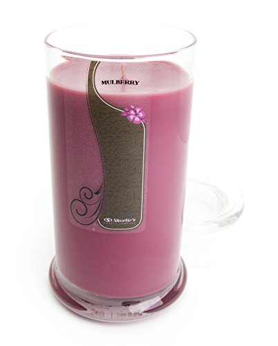 Mulberry Candle - Large Dark Red 16.5 Oz. Highly Scented Jar Candle - Made with Natural Oils - Christmas & Holiday Collection ()