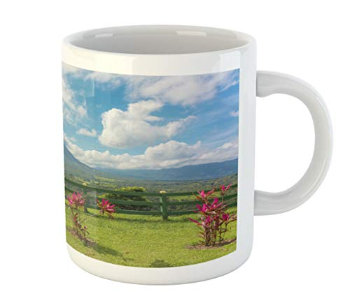 Lunarable Volcano Mug by, View of The Arenal Volcano for sale  Delivered anywhere in USA
