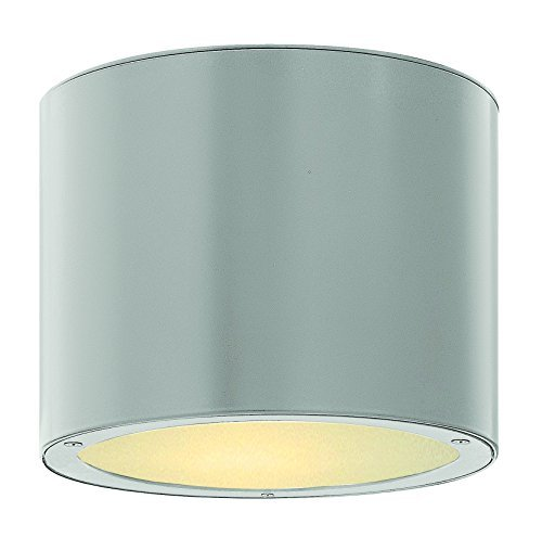 Hinkley Lighting 1663TT-LED Luna Outdoor Ceiling Light by (Hinkley Contemporary Lighting)