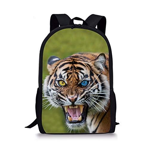 Cartable 2 Chaqlin Fox Noir Moyen Tiger 1 4HATxdp