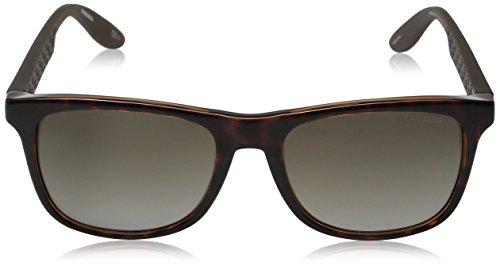 5025 Brown Havana Gradient amp; Brown Sonnenbrille S Carrera CARRERA SwXREPE