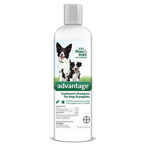 Flea and Tick Treatment Shampoo for Dogs and Puppies, 12 oz, Advantage