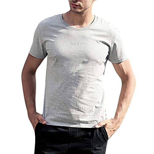 LUCAMORE Mens Summer Solid Round Neck T-Shirts Short Sleeve Casual T-Shirt Blouse Tops Gray