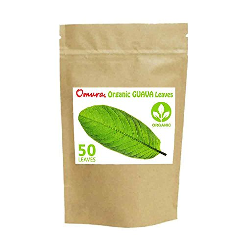 ORGANIC Omura GUAVA Leaves Dried For Tea( 50 LEAVES MORE )