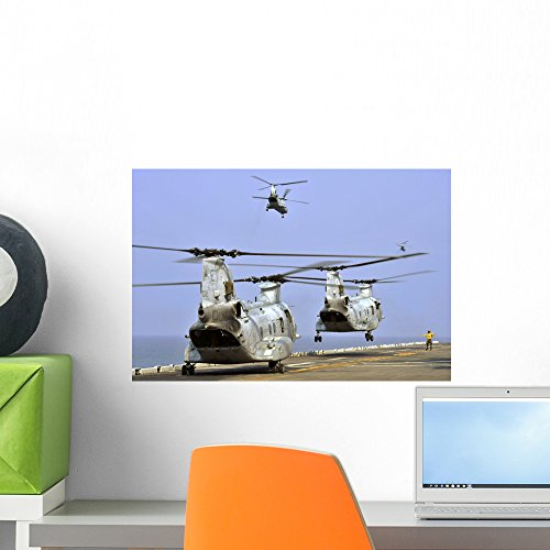 Ch-46e Sea Knight Helicopters Wall Mural by Wallmonkeys Peel and Stick Graphic (18 in W x 12 in H) WM149201