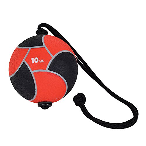 Power Systems Power Rope-Ball, 10-Inch Medicine Ball with 36 Inch Rope Handle, 10 Pounds, Red (25104)