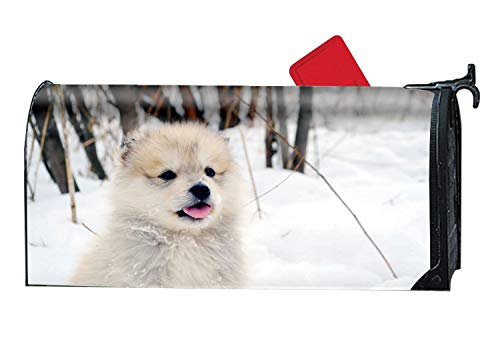 KSLIDS Animal Dogs Magnetic Mailbox Cover Standard Magnetic Mailbox Cover by KSLIDS (Image #1)