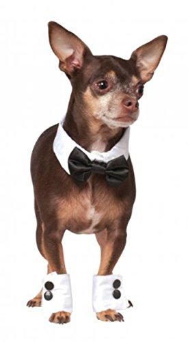 Rubie's Costume Company Bowtie and Cuff Set Pet Accessories (Large Image)
