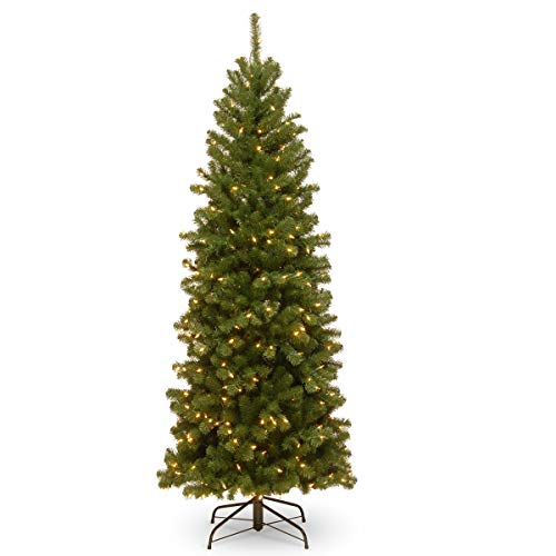 National Tree 6 Foot North Valley Spruce Pencil Slim Tree with 250 Clear Lights (NRV7-358-60) (Renewed)