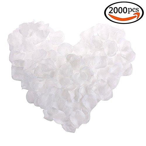 GoFriend 2000pcs Artificial Fabric Silk Flower Rose Petals