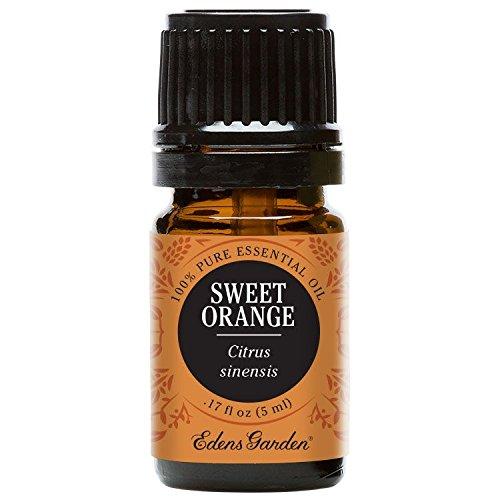 Cinnamon Leaf 100 Pure Therapeutic Grade Essential Oil By Edens Garden 5 Ml 1 6