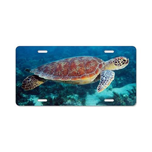 LLgLOOhoOPPPJDh Chop A Turtle Metal License Plate for Car tag - 6 X 12 inch ()