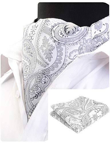 (GUSLESON Men's Silver Ascot Paisley Floral Necktie Jacquard Woven Cravat Tie and Pocket Square Set (0603-03))