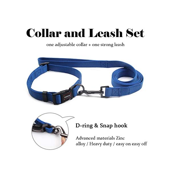 QQPETS Dog Leash and Collar Set for Medium or Large Dogs Training Walking, Adjustable Collar with Breakaway Buckle and… Click on image for further info. 2