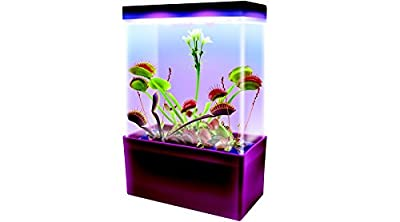 Carnivorous Creatures LED Light Cube, Teaching Toys, 2017 Christmas Toys