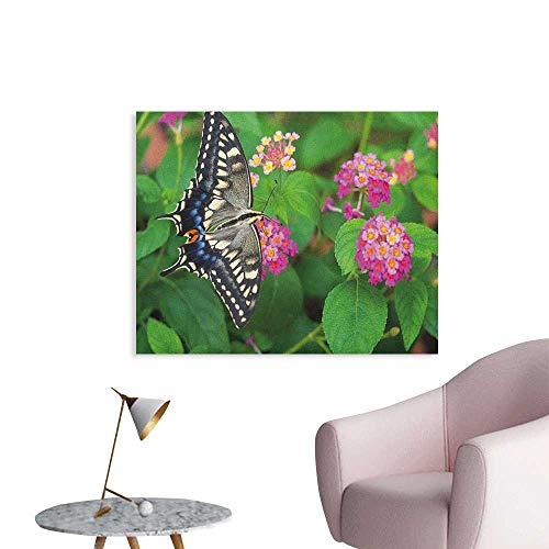 Anzhutwelve Swallowtail Butterfly Wall Sticker Decals Rare Butterfly on Blooming Spring Flowers Ecology Nature Theme Wall Poster Green Pink Black W28 xL20 ()