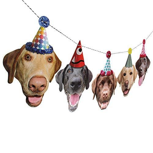 Labrador Garland - dog birthday party banner decoration (Retriever Birthday Card Labrador)