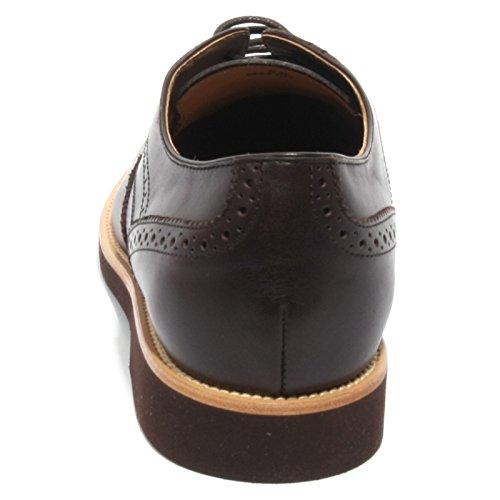 di shoe brown ALLACCIATO TOD'S marrone men GOMMA B2024 uomo testa BUCATURE moro scarpa q6PFwP