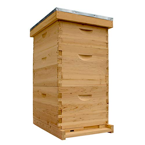 Bee Hive Complete with