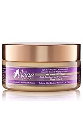 The Mane Choice Anti-Breakage & Repair Antidote Hair Mask